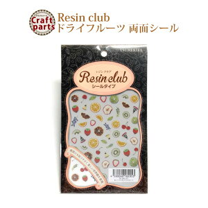 レジンクラブ R74 ドライフルーツ 両面 レジンシール RC-DRI-101 82053 【n】