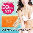 ◎【DEAL】女性らしい幸せボディに♪プエラリア サプリ高品質×高純度「プエラリア」腸内環境を整える「乳酸菌発酵物」美容には欠かせ…