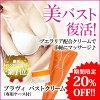 Bravie Breast Cream ( 50 g / with case)