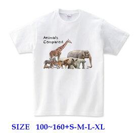 半袖 Tシャツキッズ [ 100-160cm ] 比べる動物 Animals compared | ダンス 派手 女の子 ダンス衣装 衣装 ヒップホップ こども かわいい 男の子 ロゴ 子供 かっこいい 子ども 半袖tシャツ トップス ロゴt ロゴtシャツ ダンスウェア ティーシャツ