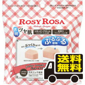 ☆メール便・送料無料☆ロージーローザ ジェリータッチスポンジ ハウス型 6個入り ROSY ROSA 代引き不可 送料無料 ゆうパケット
