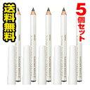 ●メール便・送料無料●資生堂 眉墨鉛筆 2 ダークブラウン(4g) 5個セット 代引き不可 送料無料