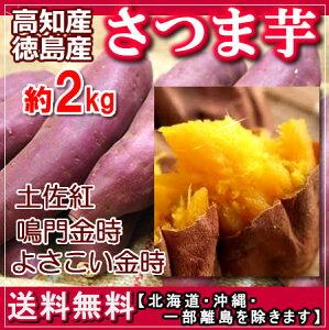【送料無料】高知,徳島産さつま芋約2kg土佐紅 よさこい金時サツマイモ10P23Sep15