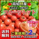 送料無料・高知産フルーツトマト約2kgご家庭用北海道・沖縄は送料500円トマトサミット母の日父の日05P07Feb16