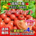 送料無料・高知産フルーツトマト約4kgご家庭用北海道・沖縄送料500円05P07Feb16高知トマトサミット母の日父の日05P18Jun16