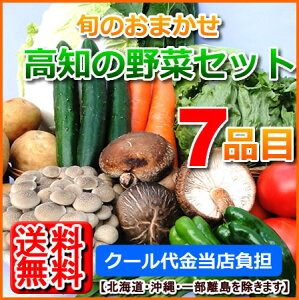 【送料無料】国内産野菜セット7品目詰め合わせ北海道1000円沖縄1500円送料ご負担頂きます。