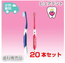 ジーシー(GC)ルシェロ I-20 歯ブラシ/インプラント(20本入)