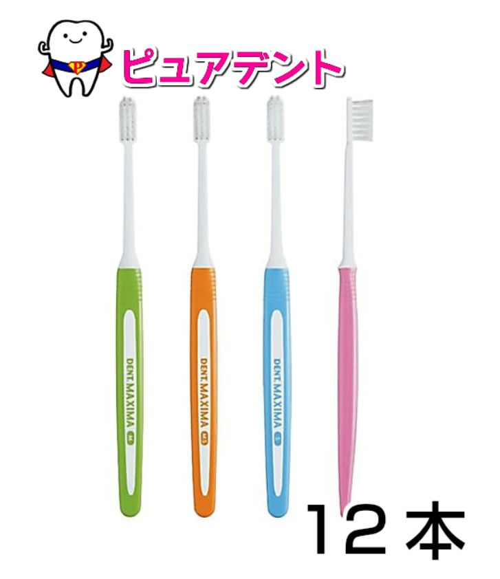【メール便選択で送料無料】ライオン マキシマ 12本 歯ブラシ(DENT.MAXIMA) S/MS/M 1箱
