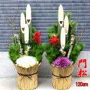 迎春用門松 120-A お飾り お正月 門松 一対(2個セット) 玄関 販売 正月飾り 120cm