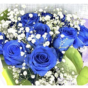 【生花花束】 青バラ 「奇跡」「神の祝福」プロポーズ 誕生日 記念日 花束 青いバラ花束 ベンデラ 薔薇 宅配送 お祝 ギフト プレゼント 送別会 退職祝いカスミ草、グリーン付き バラの花束