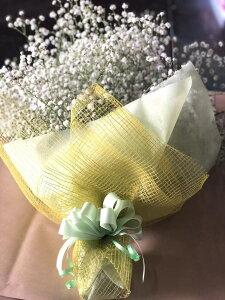 【あす楽】PURIZA かすみ草・カスミソウ・花束 ボリュームいっぱい プレゼント ギフト 写真 誕生日 送料無料