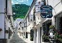 風景 450スモールピース パズルの達人 ミハスの白い街並み-スペイン(26x38cm)(08-554)[エポック社] t101