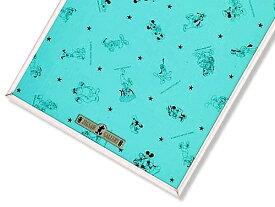 ジグソーパズル専用 ジグソーパネル ディズニー専用パネル 1000ピース セーフティ1000P用 (51×73.5 cm)(-) テンヨー 梱140cm t102