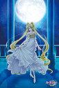 【月間優良ショップ受賞】美少女戦士セーラームーンCrystal 1000ピース ジグソーパズル 美少女戦士セーラームーンCrystal Princess Ser...