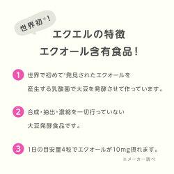 【メール便】大塚製薬エクエルパウチ120粒×3袋