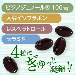 【定期購入】ピクノジェノール(30日分・120粒)