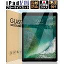 iPad 9.7 10.5 11 12.9 ブルーライトカット ガラスフィルム Pro 12.9 (2015/2017) 10.5(Air 2019 / Pro 2017) iPad 9.…