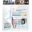 【スーパーSALE最大半額+先着15%OFFクーポン】iPad 9.7 フィルム ブルーライト 低減 ブルーライトカット 2018 第6世代 / 2017 第5世代 / Pro / Air2 / Air 保護フィルム 抗菌 日本製 ネコポス