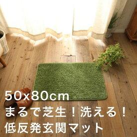 玄関マット 室内 50×80 おしゃれ 洗える 北欧 夏用 大きめ モダン 風水 高級 薄型 50 80 滑り止め 屋内 グリーン マット エントランスマット