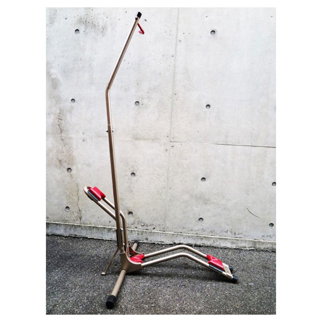 《即納》【あす楽】MINOURA(ミノウラ) DS-800AKI 縦置き対応の省スペース自転車ラック 屋内保管スタンドに[ディスプレイスタンド][スタンド型](DS2100姉妹品)