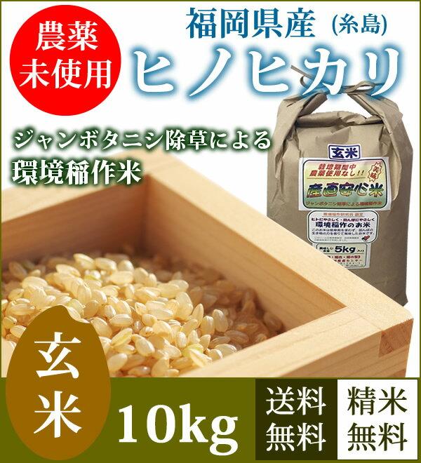 ヒノヒカリ 玄米 福岡県糸島産 農薬未使用 10kg 送料無料(5kg×2袋) 農家直送 29年産