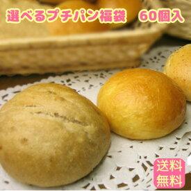 冷凍パン 生地福袋♪プチパンが60個