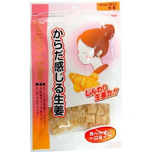 からだ感じる生姜 120g×30袋セット 紅茶 温まる スープ 食べやすい コーヒー ケーキ 料理 お菓子
