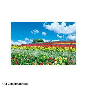 ※2021年6月上旬入荷分予約受付中 やのまん ジグソーパズル 風景 富良野を彩る花の丘(北海道)10-1344
