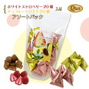 ホワイトストロベリー&チョコレートバナナ 40個入り ※賞味期限:2020年10月29日