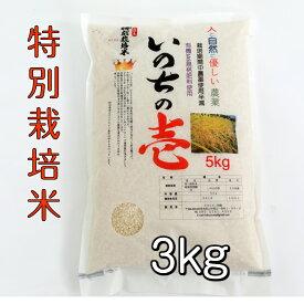 飛騨産 いのちの壱 (白米 玄米)3kg 特別栽培米 奇跡の新品種