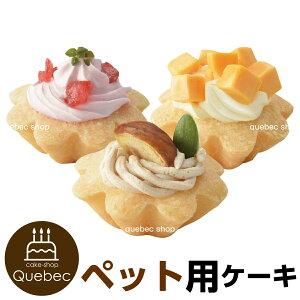ペットケーキ プチタルトケーキセット (苺、栗、チーズ) ワンちゃん用