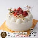 (本日ご予約最終日) 2019 生デコクリスマスクリスマスケーキ 5号 約15.0cm (3〜6名様) 幸蝶