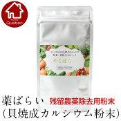 アーデンモア農薬除去用粉末やくばらい薬ばらい100g