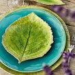 RIVIERAリヴィエラハイドランジアリーフ2色VEP221【COSTANOVAコスタノバポルトガル輸入洋食器おしゃれおもてなしケーキ皿ケーキプレート食洗機可電子レンジ可】
