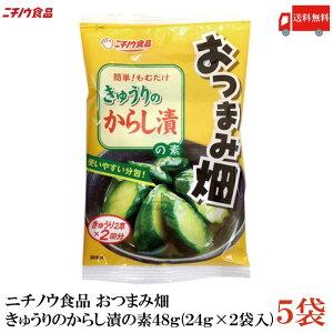 送料無料 ニチノウ食品 おつまみ畑 きゅうりのからし漬の素 48g (24g×2袋入) ×5袋