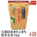送料無料 特別栽培米 大潟村 あきたこまち 発芽玄米 1kg ×4袋