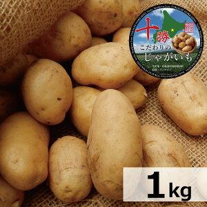 北海道産 じゃがいも 十勝産 メークイン M/特M/L/2L/3Lサイズ混合 1kg メイクイーン/ジャガイモ/じゃが芋/ジャガ芋/ばれいしょ/馬鈴薯/バレイショ/正規品