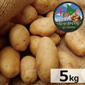 じゃがいも 送料無料 北海道産 十勝産 メークイン R3年産 M/特M/L/2L/3Lサイズ混合 5kg メイクイーン/ジャガイモ/じゃが芋/ジャガ芋/ばれいしょ/馬鈴薯/バレイショ/正規品