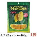 セブ ドライマンゴー100g×1袋【セブ島 フィリピン マンゴー】