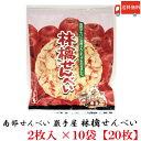 送料無料 巖手屋 林檎せんべい 2枚入×10袋 (南部せんべい 岩手屋 小松製菓)