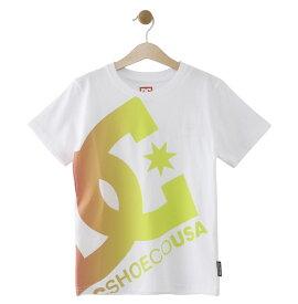 セール SALE DC ディーシー シューズ 19 KD PRINT BIG STAR SS Tシャツ ティーシャツ