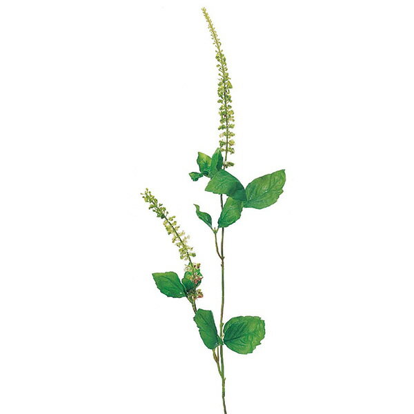 《 造花 グリーン 》Asca/アスカ バジル×2 グリーンインテリア フェイク グリーン