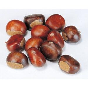 《 フェイクフルーツ 》◆とりよせ品◆Asca クリ (1箱12コ入) ブラウンインテリア