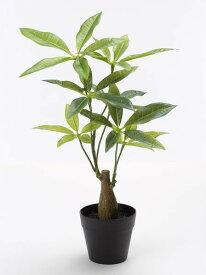 《 造花 グリーン 観葉植物 》花びし/ハナビシ ミニパキラポット グリーンインテリア インテリアフラワー