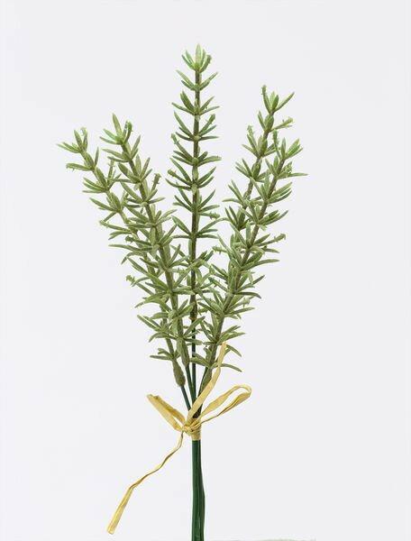 《 造花 グリーン 》花びし/ハナビシ ローズマリーバンドル(5本束) グリーンインテリア