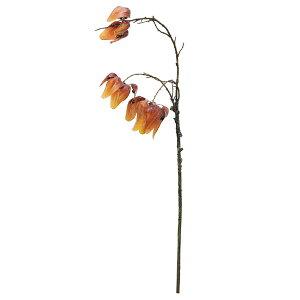 《 造花 グリーン 》◆とりよせ品◆Asca(アスカ) スイートガム フォールインテリア フェイク グリーン パーツ インテリアフラワー フェイクフラワー シルクフラワー インテリアグリーン アー