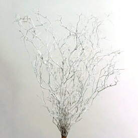 《 プリザーブドフラワー 》★即日出荷★大地 ヴェスペネスト・プリザーブド 枝 花材 材料 スワッグ ブーケ 白