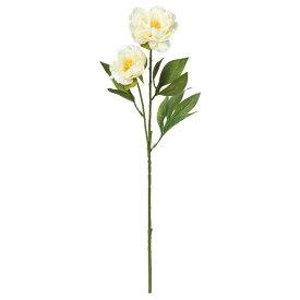 《 造花 》Asca/アスカ ピオニ-X2ボタン 牡丹 シャクヤク 芍薬
