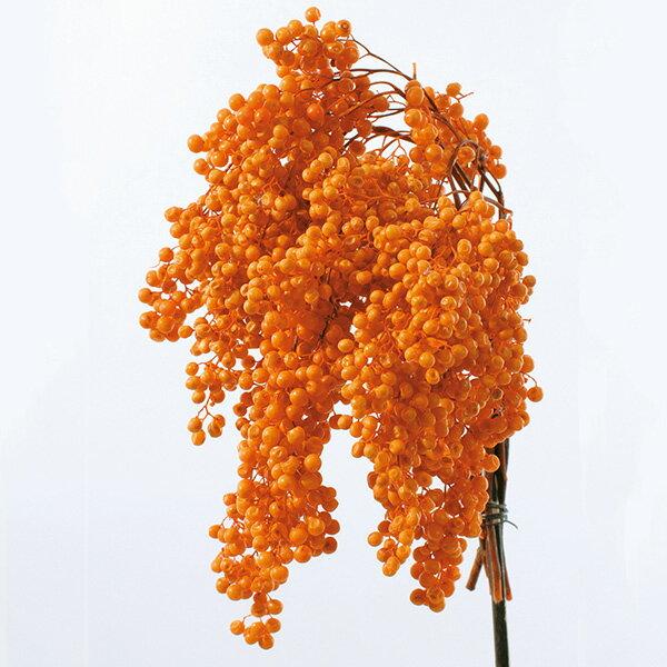 《 プリザーブドフラワー 》★即日出荷★大地/オオチノウエン(ソクジツ) ペッパーベリー・プリザーブド オレンジ