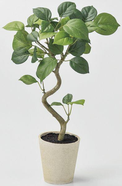 《 造花 グリーン 観葉植物 》Asca/アスカ ベンジャミンポット グリーンインテリア インテリアフラワー